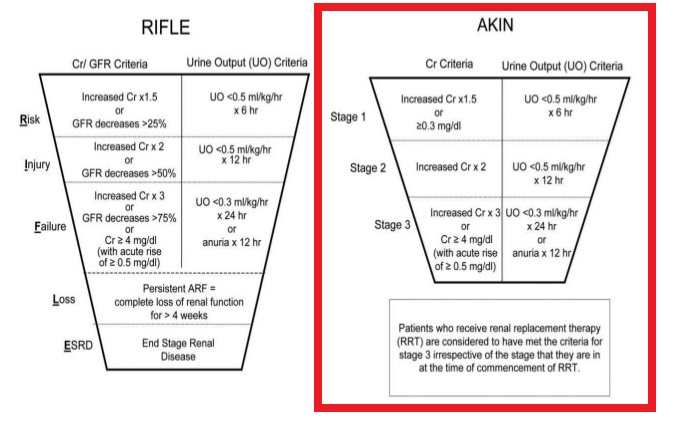 Armlocks and emergency acute renal failure and acute kidney injury picture above shows the akin criteria in the red box as you can see you can divide aki into three stages depending on the level of serum creatinine scr ccuart Gallery
