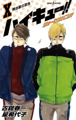 Hellominju.com: ハイキュー!!    ショーセツバン!! 第10巻 表紙    Haikyuu!! Shōsetsuban!! Covers   Hello Anime !