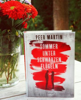 buchgeschenkeguide-blog-sommer-unter-schwarzen-fluegeln