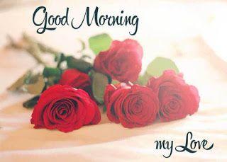 good morning flower wallpaper