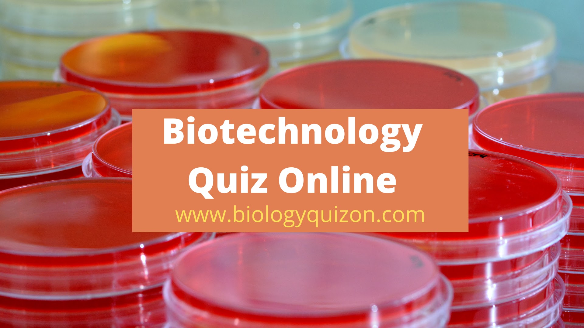 Biotechnology Multiple Choice Quiz Questions  | Biotechnology Online Quiz