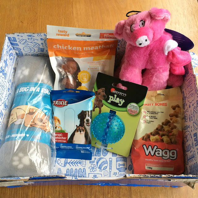 Review of pawsome box for november for ollie