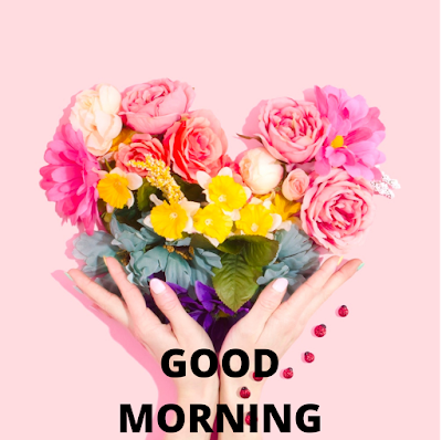 Good morning images 2020 Download Free