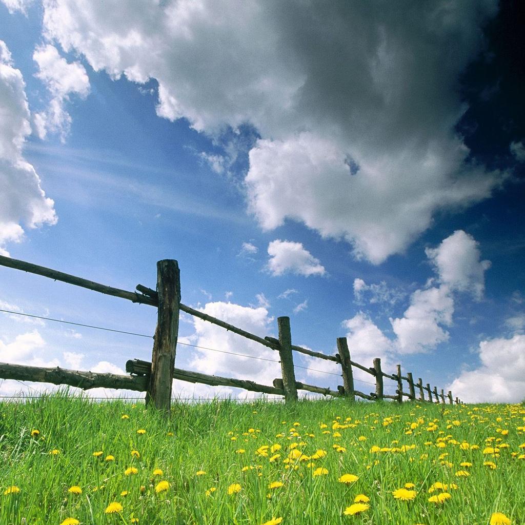 https://1.bp.blogspot.com/-DuxgilMzP5U/T3PW3PURSYI/AAAAAAAADBI/m0o180KBvlY/s1600/fences+and+field+_+nature.jpg