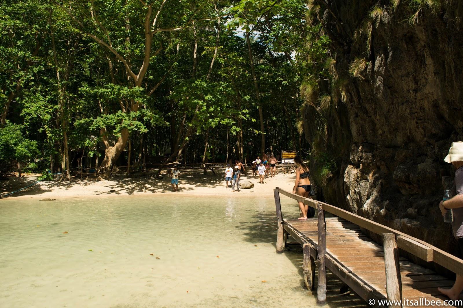 Ko Phi Phi Island - Thailand - Phi Phi Island Tour | Exploring Loh Samah Bay And Maya Bay