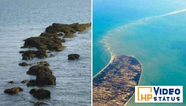 આને કારણે રામ સેતુના પત્થરો સમુદ્રમાં ડૂબી ગયા ન હતા, તેનું કારણ જાણીને તમને આશ્ચર્ય થશે - Real Story
