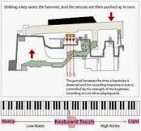 Casio Privia piano key action
