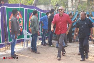 Tamil Film Industry Jallikattu Support Protest of Jallikattu  0091.jpg