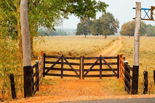 LATROCÍNIO TENTADO: Trio encapuzado invade fazenda atrás de cofre e atira em caseiro