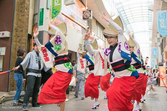高円寺PAL商店街、阿波踊り、江戸っ子連の流し踊りの写真