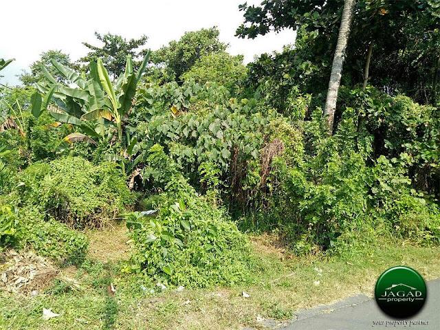 Tanah Bonus Rumah dekat RS Akademik UGM