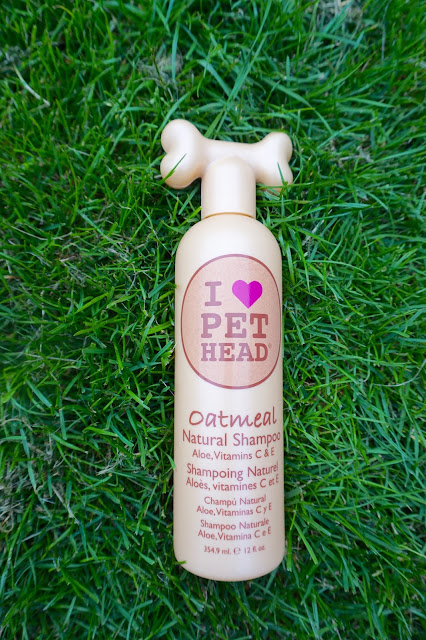 indigo and mouse, pet blogger, essex blogger, pet product review, Pet head oatmeal shampoo