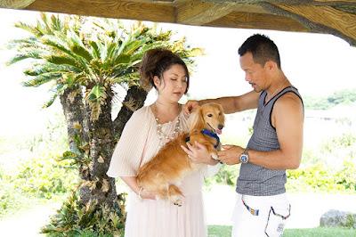 沖縄ペット写真撮影