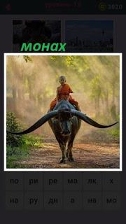 655 слов на буйволе едет монах по тропинке 18 уровень