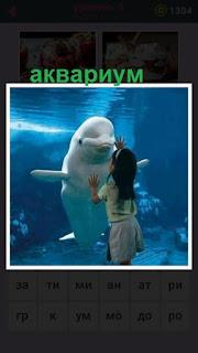 655 слов девочка в аквариуме разглядывает дельфина 9 уровень