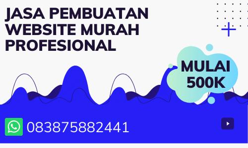 JASA PEMBUATAN WEBSITE MURAH PROFESIONAL