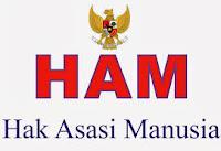 Perkembangan Hak Asasi Manusia ( HAM )