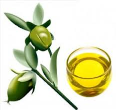 jojoba hair treatment