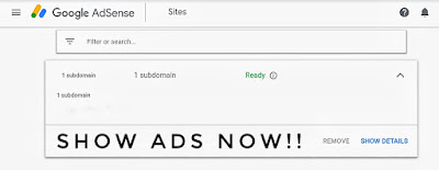 Adsense Approved on Custom Domain Subdomain