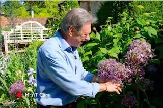 Alan Titchmarsh Alliums