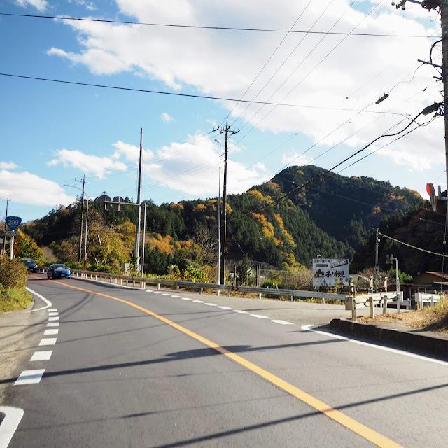 国道299号 子ノ権現入口