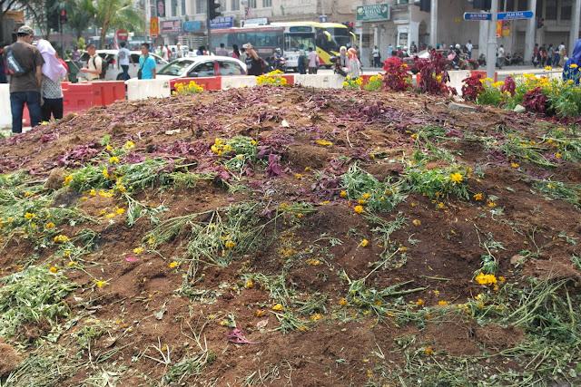 merdeka day 2015 flower trampled