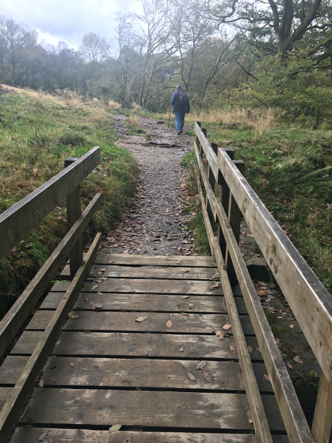 wooden-bridge-in-forground-with-path-leading-off-