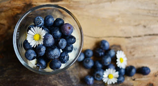 Blue Berry Top Healthy Fruits in Hindi