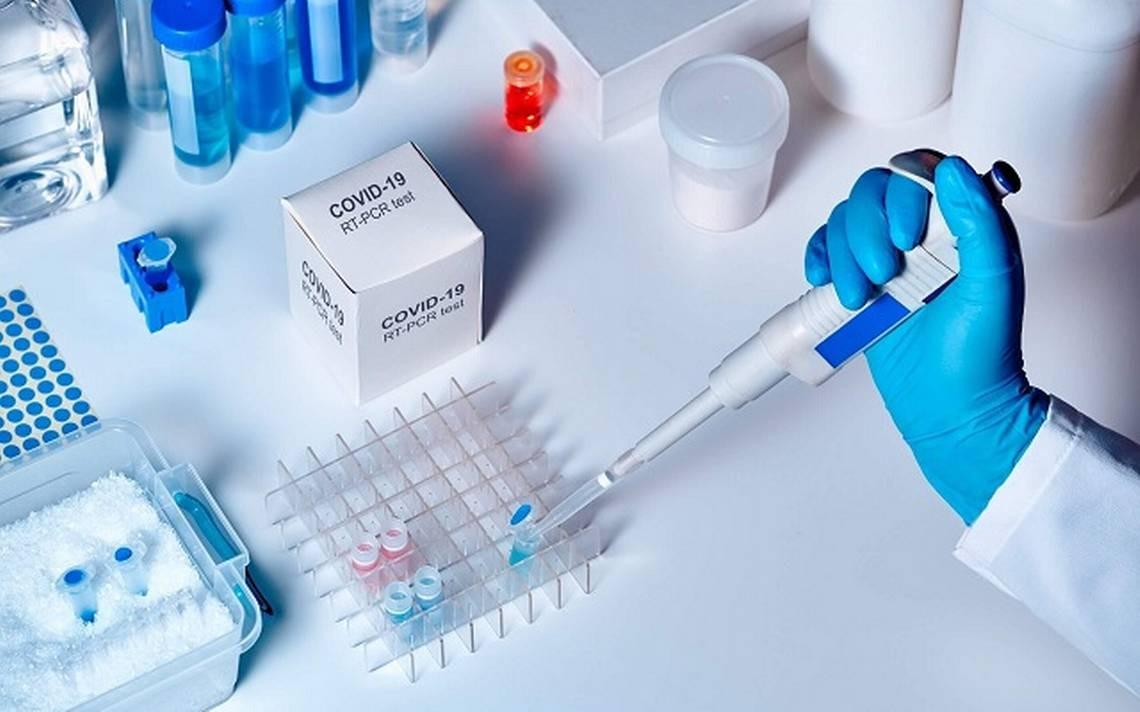 prueba-rapida-coronavirus