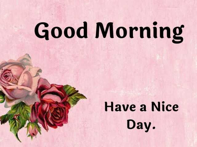 Good Morning Photos with Beautiful Flowers HD Free Download