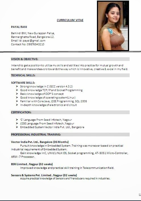 free download professional resume format