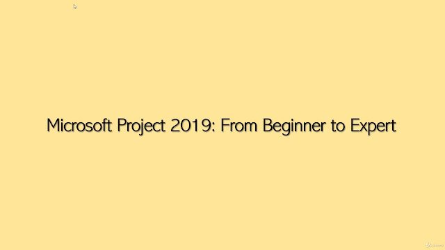 Microsoft Project 2019: From Beginner to Expert