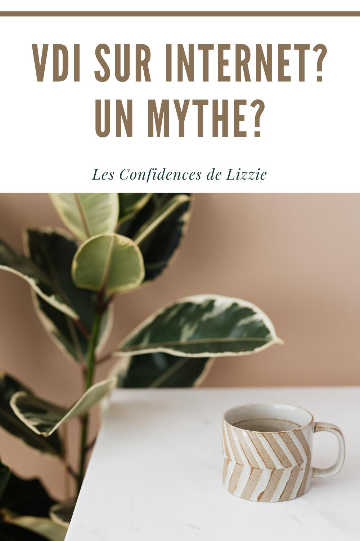 vdi-sur-internet-un-mythe