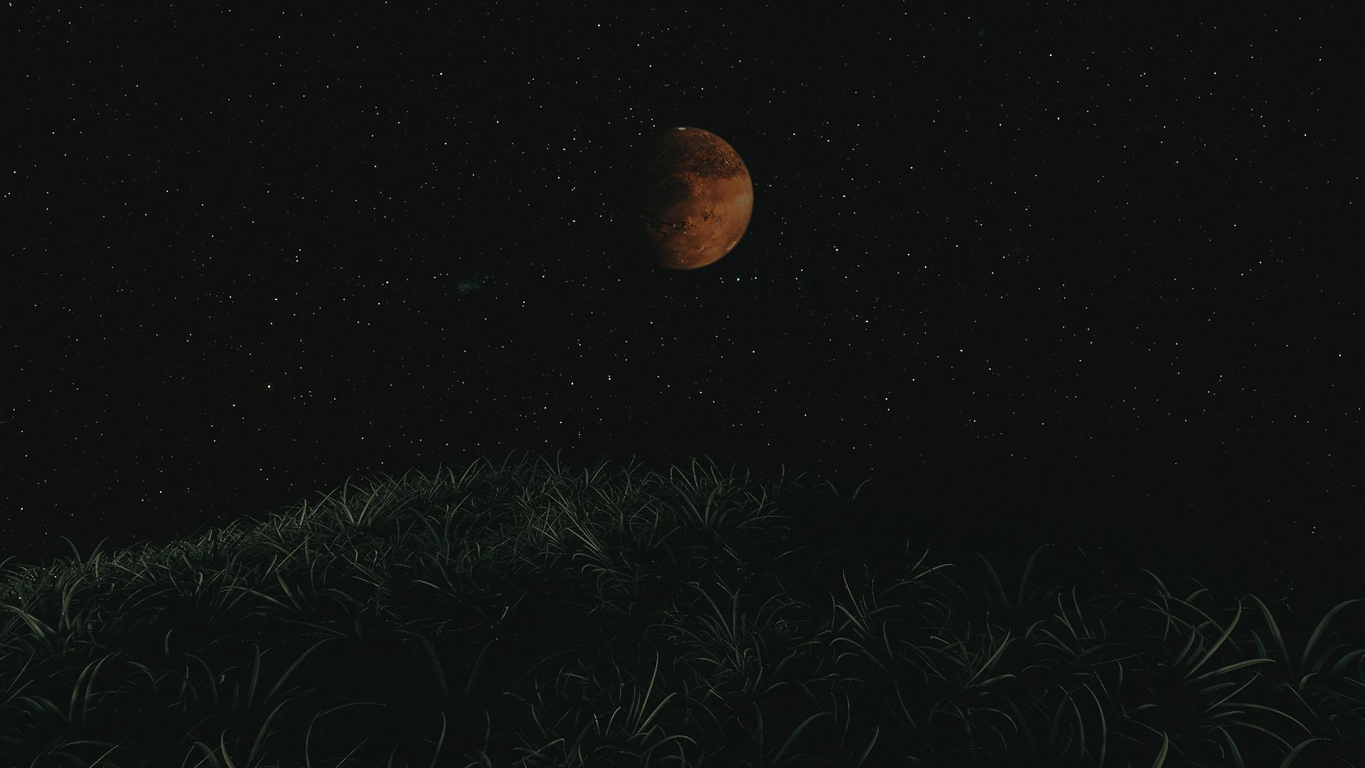 """سارة الأميري تعلن بدء """"مسبار الأمل"""" مهمته العلمية لاستكشاف المريخ"""