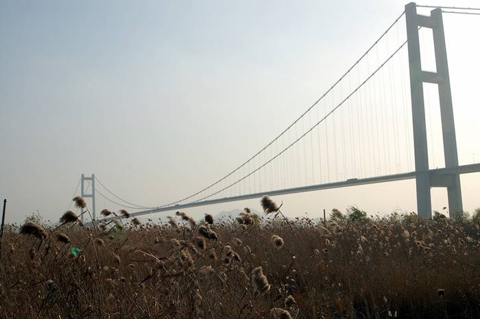 China. Rongyang Bridge. The main span is 1,490 m. (Sjiong)