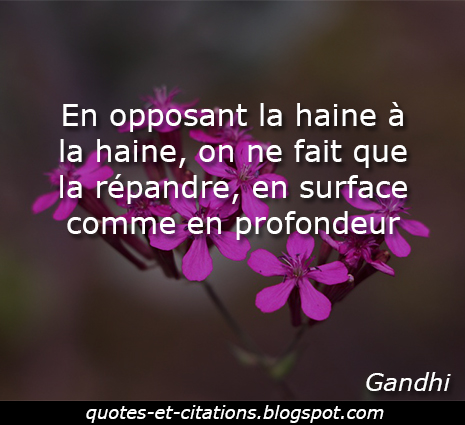 citation haine