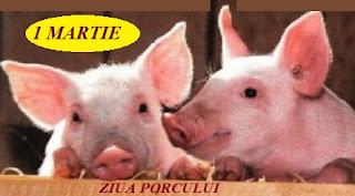 1 martie: Ziua Porcului