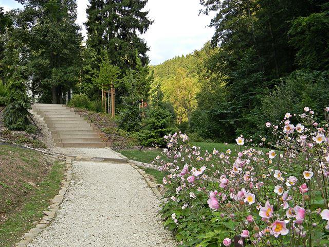 Międzygórze, kwiaty, góry, wypoczynek