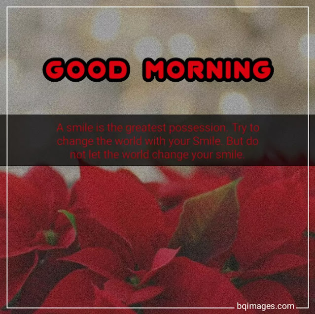 morning smiles quotes