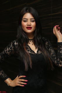Actress Monica in spicy transparent Black Top at O Pilla Nee Valla Movie Audio Launch Feb 2017 049.JPG
