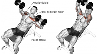 Top 5 Exercises To Build Chest, Incline Dumbbell Press
