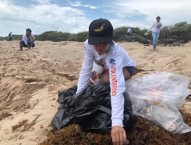 Volunteer cleaning beach