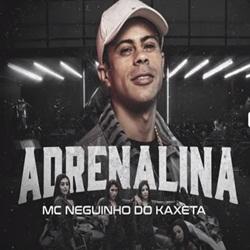 Baixar Adrenalina - MC Neguinho do Kaxeta Mp3