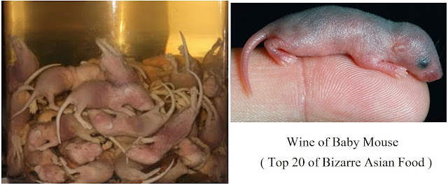 Wine of Baby Mouse, China/Korea- top 20 of bizarre asian food
