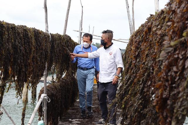 Bright PLN Batam Berkerjasama dengan Pospera Bangun Gudang Penampungan dan Pengolahan Rumput Laut
