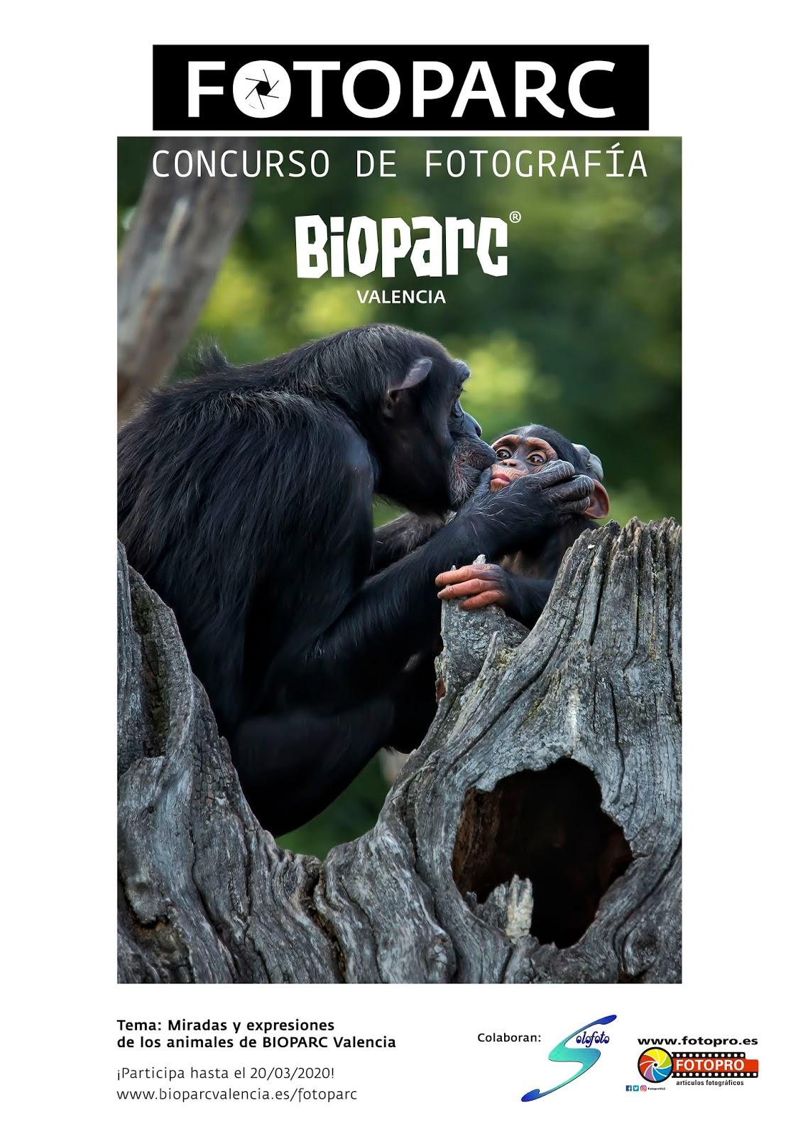 Cartel FOTOPARC 2020 - Concurso de fotografía de BIOPARC Valencia
