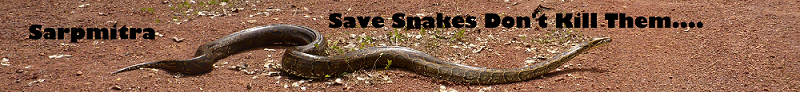 Sarpmitra Snake Saver