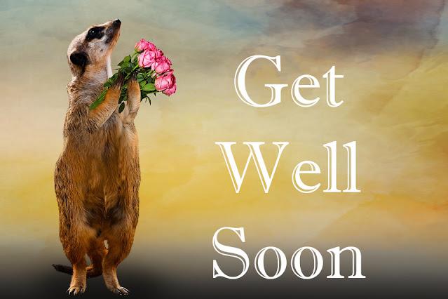 Get Well Soon Get Well Soon