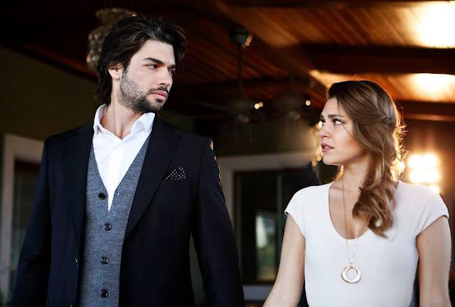 مسلسل شمس الشتاء Kış Güneşi الحلقة 17 مترجمة للعربية