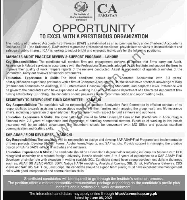 Latest Jobs in Institute Of Chartered   Accountant of Pakistan ICAP 2021